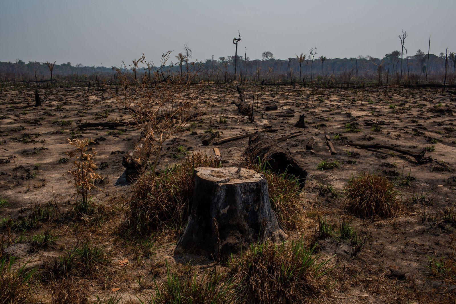 Nincs kiút a válságból klímaigazságosság nélkül!