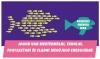 Az energiaközösségek jövője a Parlament előtt: élhetünk-e az új jogainkkal a nagy halak mellett?