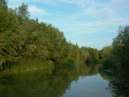 Online szeminárium  az éghajlatváltozáshoz való helyi alkalmazkodás elősegítéséért